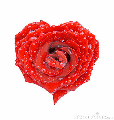Free Red Rose In The Form Of Heart Royalty Free Stock Photo - 2841135