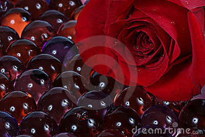 Red rose and marbles