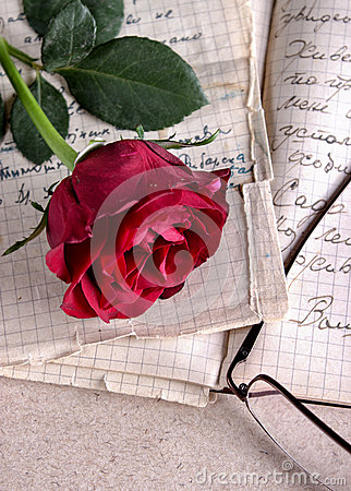 Red Rose on Old Paper