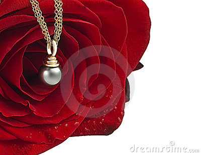 Red rose with pearl