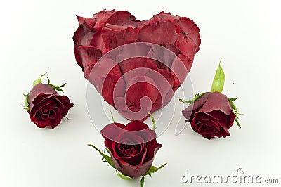 Red rose petal heart