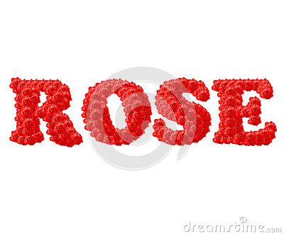 The Red Rose text