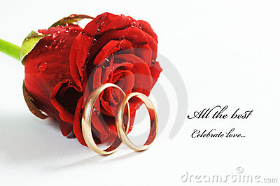 Red Rose And Wedding Ring Stock Image Image 12358701