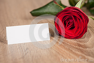 Red rose on wood