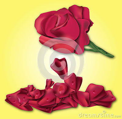Red Rose At Yellow Background