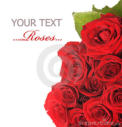 Free Red Roses Stock Photo - 12320380