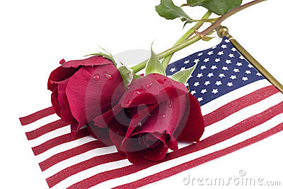 Red Roses on American Flag