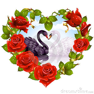Free Red Roses And Couple Swans Stock Photography - 15131632