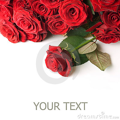 Free Red Roses Border Royalty Free Stock Image - 13107166