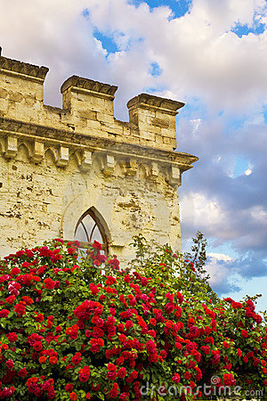 Free Red Roses In Front Of Castle Stock Image - 2910271
