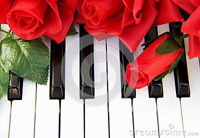 Red Roses on a piano