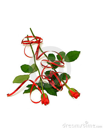 red roses with ribbon isolated on white