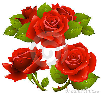Free Red Roses Set Stock Image - 12483271