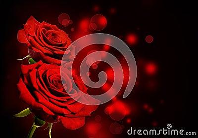 Red roses Valentine background