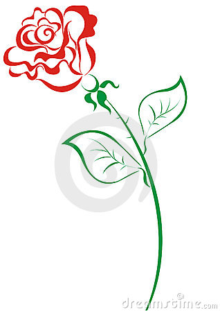 Red roses. Vector illustration
