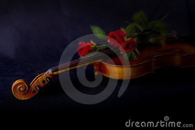 Red roses on violin