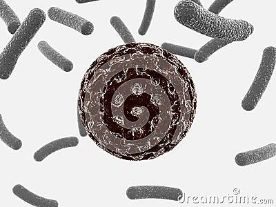 Red round bacterium
