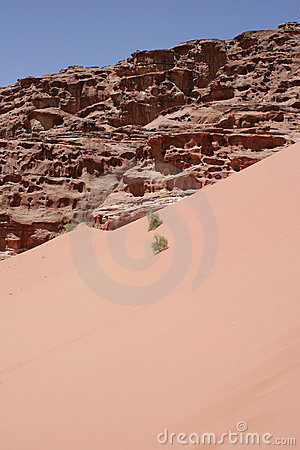 Red sand dune and desert landscape