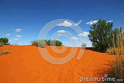 Red sand hill (Australia)