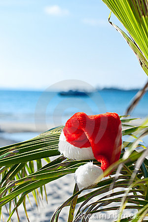 Red Santa s hat hanging on palm tree on beach