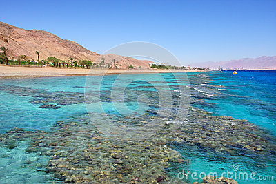 Red Sea shoreline. Eilat, Israel.