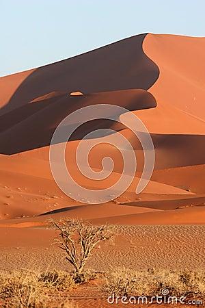 Free Red Sossusvlei Dunes Stock Photography - 5103002