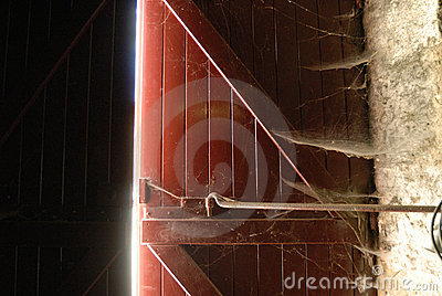 Red Spiderweb Door