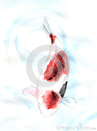 Red spot Koi carp fish watercolor painting