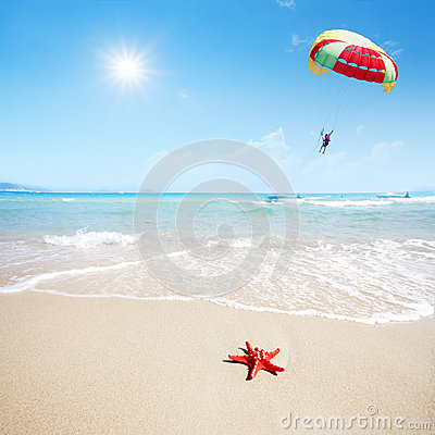 Red starfish on beach and parachute in sky