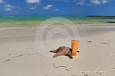 Red starfish on a beautiful caribbean beach
