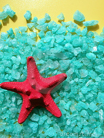 Red starfish on salt