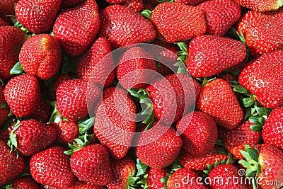 Red strawberries pattern in maket box