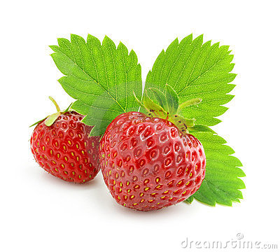 Free Red Strawberry Fruits With Green Leafs Isolated Royalty Free Stock Photography - 5553167