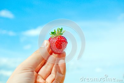 Red  strawberry in humand hand.
