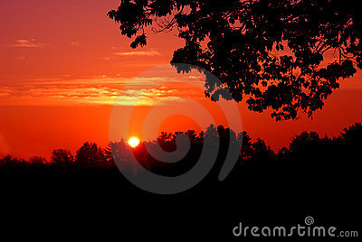 Red sunset silhouette