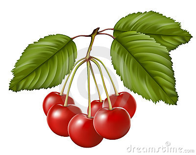 Red sweet cherry with leaves