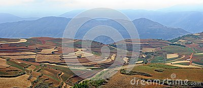 The red terrace of yunnan china stock photo image 46193756 for Terrace landform