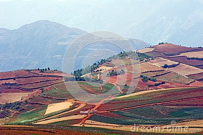 The red terrace of yunnan china stock photo image 46194034 for Terrace landform
