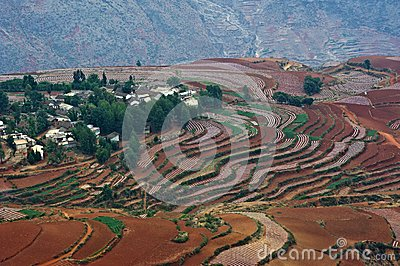 The red terrace of yunnan china stock photo image 46194964 for Terrace landform