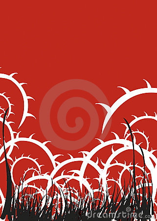 Free Red Thorns Illustration Stock Images - 2152994