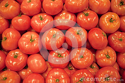 Red tomato background