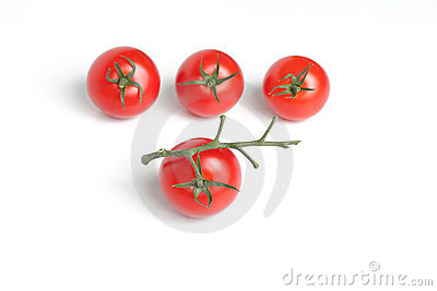 Red tomato with branch