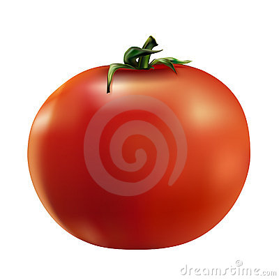 Red tomato - vector file added