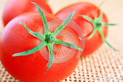 Red tomatoes.