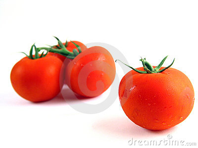 Red tomatoes on white background II