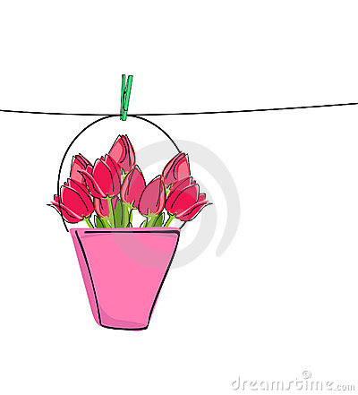 Red tulips on clothes line