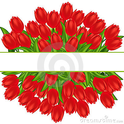 Free Red Tulips. Gradient Meshes. Stock Photos - 18166613