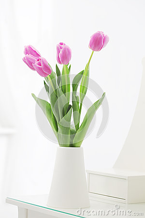 Tulips in room