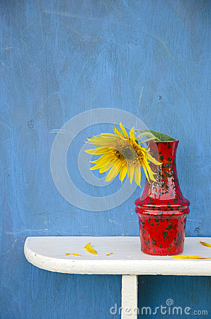 Free Red Vase With One Sunflower Blossom Stock Photography - 34411882