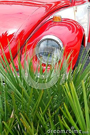 Red vw beetle